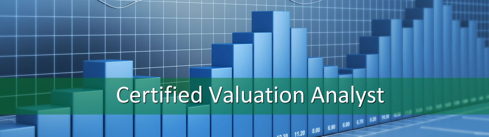 Certified Dental Valuation Analyst Healthcare Business Consultant